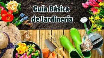 Guía Básica de Jardinería - Guias PDF