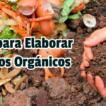 Guía para Elaborar Abonos Orgánicos - Guías PDF
