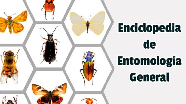 Enciclopedia de Entomología General - Guias PDF
