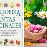 Enciclopedia de Plantas Medicinales - Guias PDF