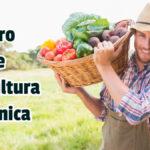 Libro de Agricultura Orgánica - Guias PDF