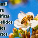 Manual para Identificar los Beneficios de los Insectos - Guias PDF