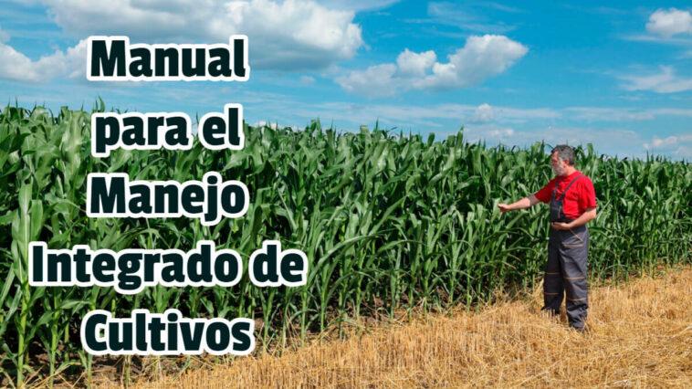Manual para el Manejo Integrado de Cultivos - Guias PDF